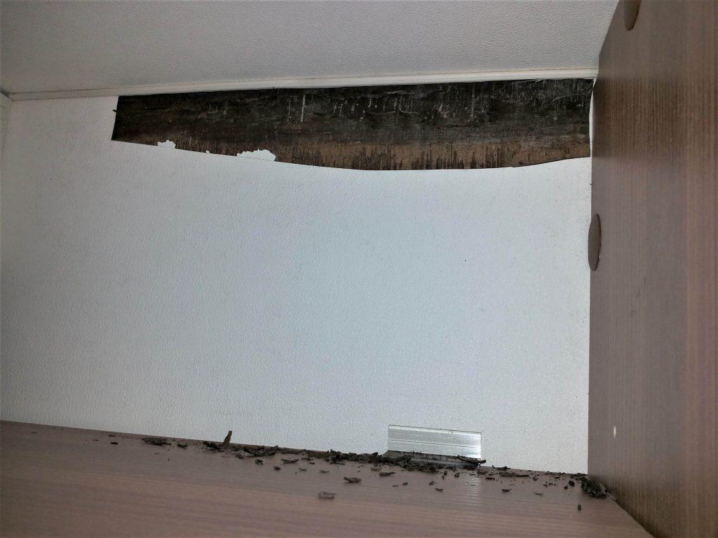 Weinsberg Wohnmobil Feuchtigkeitsschaden